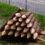 農業用の杭丸太